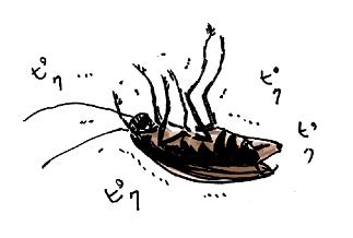 ゴキブリホイホイ